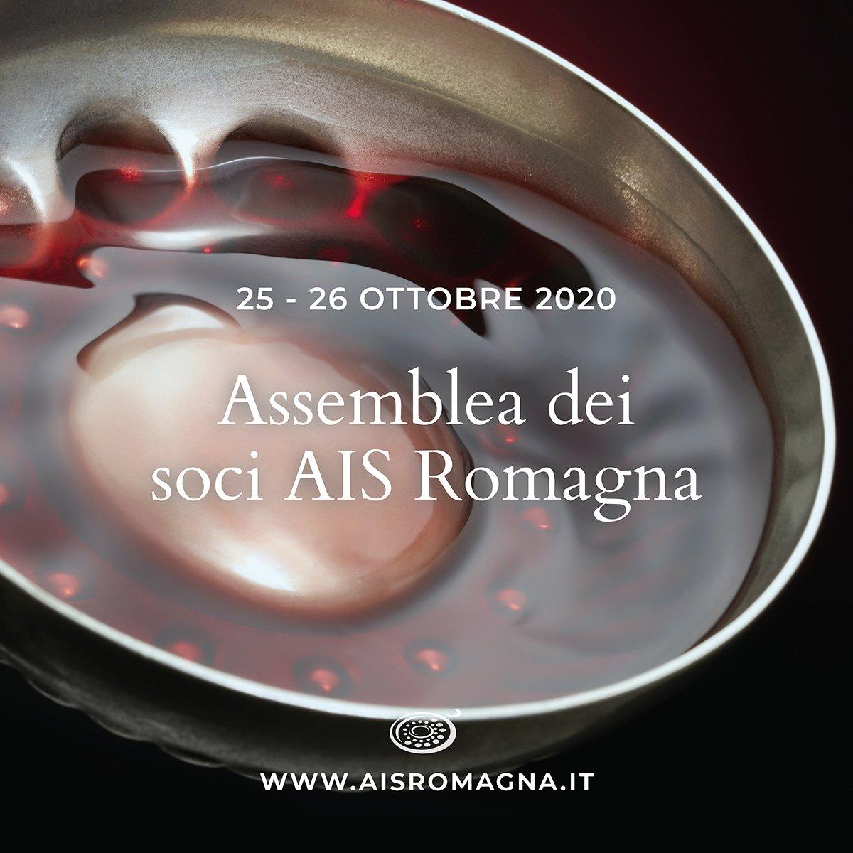 Assemblea dei soci di AIS Romagna