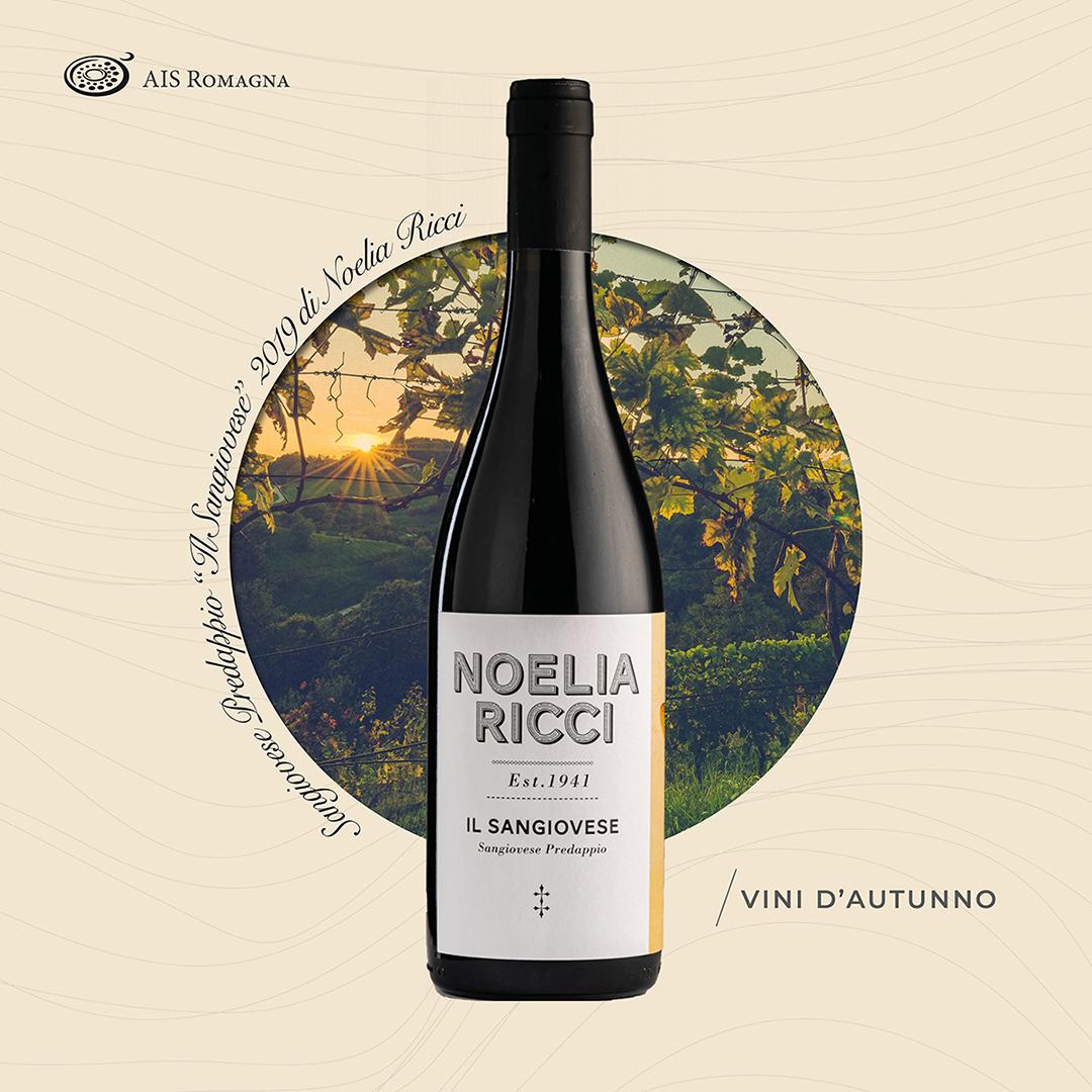 """Sangiovese-Predappio """"Il Sangiovese"""" 2019 – Noelia Ricci"""