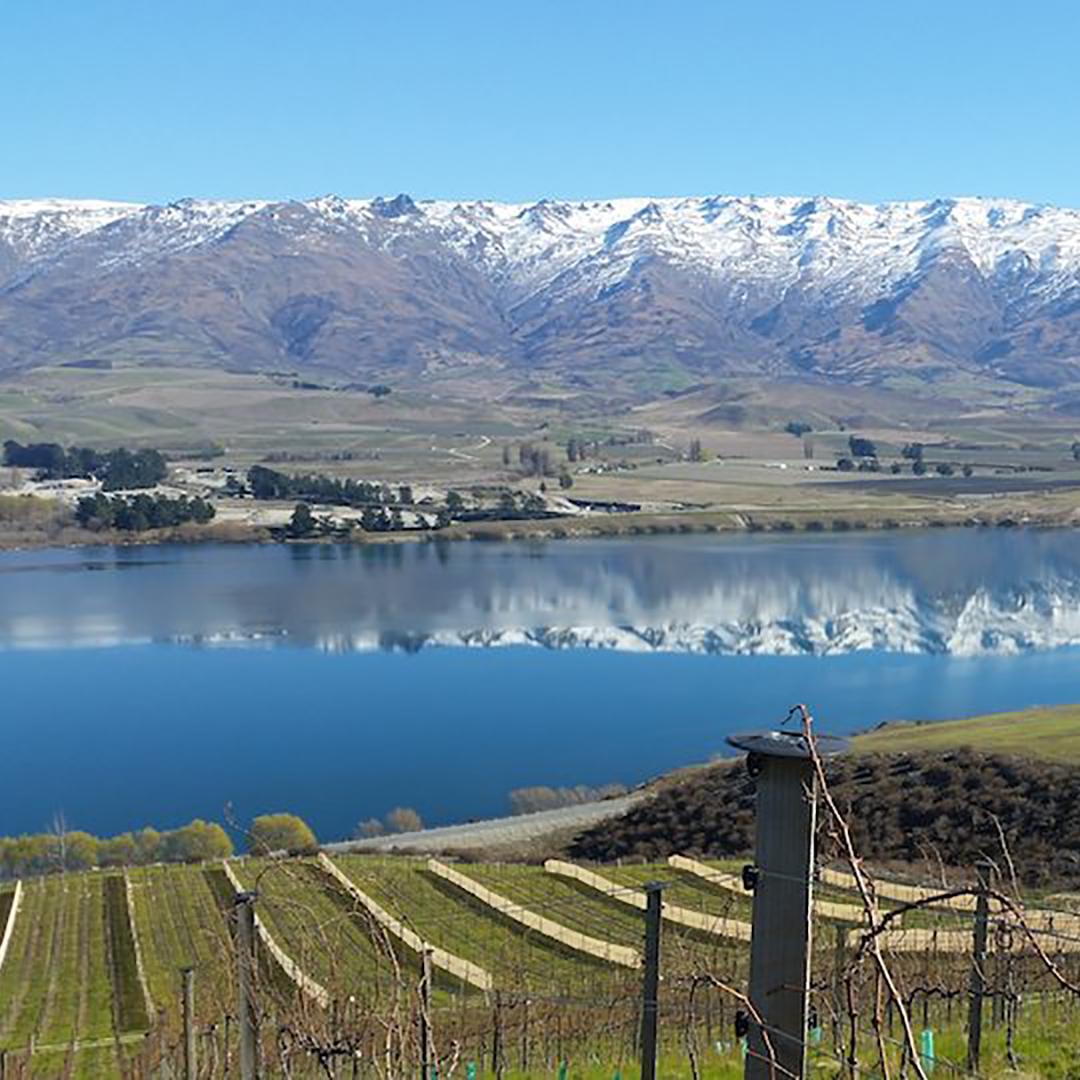 Lake Dunstan, Central Otago.