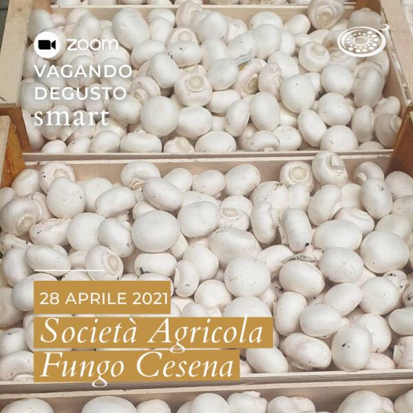 Vagando Degusto: Fungo Cesena