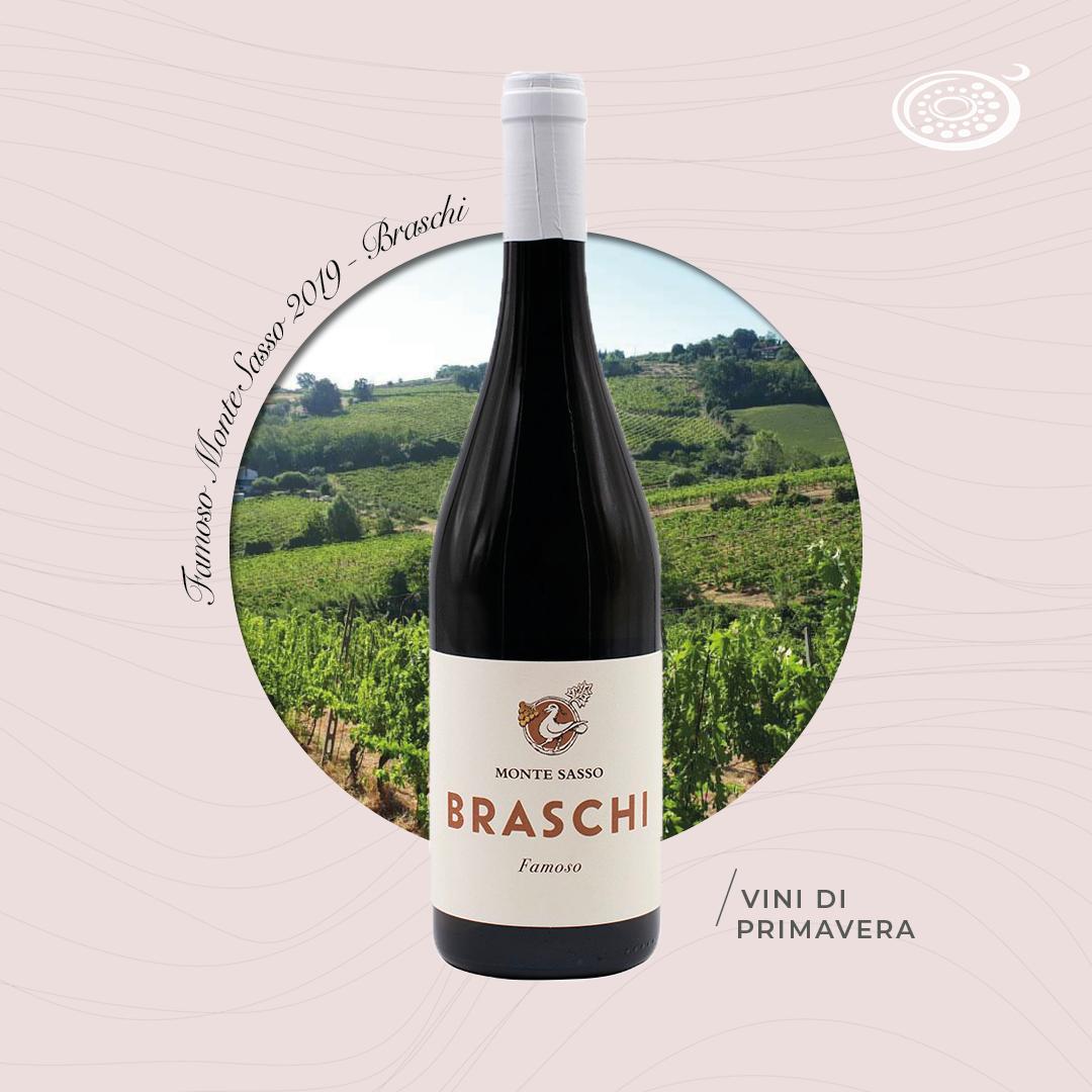 Famoso Monte Sasso 2019 – Braschi